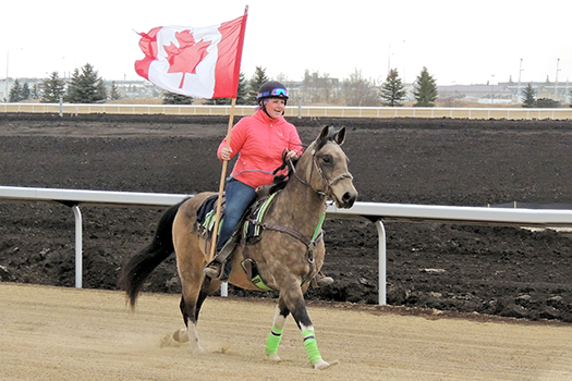 First Thoroughbred racehorses hit the Century Mile Racetrack